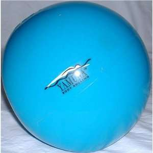 Yamuna Body Rolling Blue Ball (six inch ball) Sports