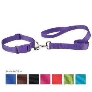 Zack and Zoey US2392 Nylon Dog Lead Baby