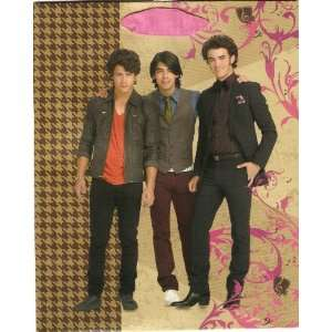 Hallmarks Disney Jonas Brothers Gift Bag Health